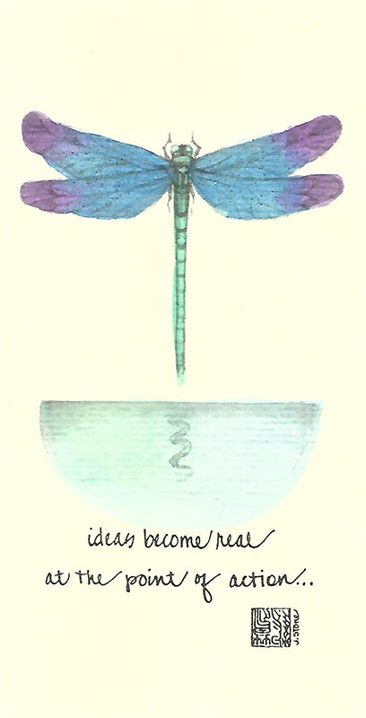 03c-Box - Dragonfly - Box of 8 or 10