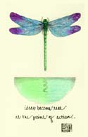 03p-Dragonfly - Dragonfly - Poster