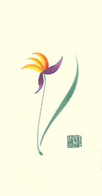 bp42-Box - Bird of Paradise - Box of 8 or 10