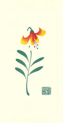 fl96-box - Fire Lily - Box of 8 or 10