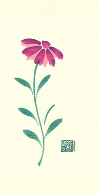 pc86-box - Coneflower - Box of 8 or 10
