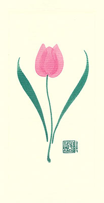 tu75-box - Tulip - Box of 8 or 10